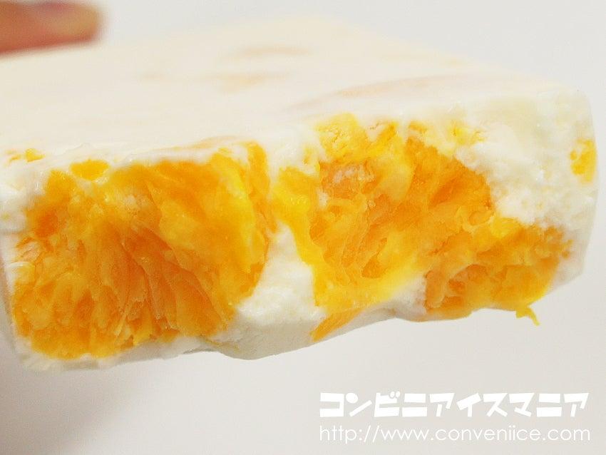 赤城乳業 ガツン、と みかん バニラヨーグルト味