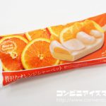 贅沢なオレンジシャーベット