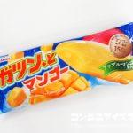 ガツン、とマンゴー