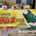セイカ食品 ラムネアイス 宮崎産日向夏
