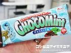 赤城乳業 チョコミント氷バー