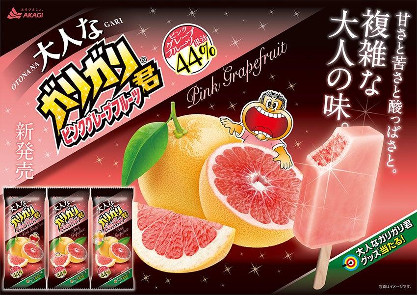 赤城乳業 大人なガリガリ君 ピンクグレープフルーツ