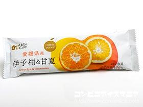 ウチカフェ 日本のフルーツ 伊予柑&甘夏