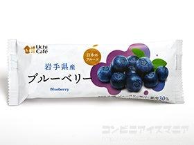 ウチカフェ 日本のフルーツ ブルーベリー